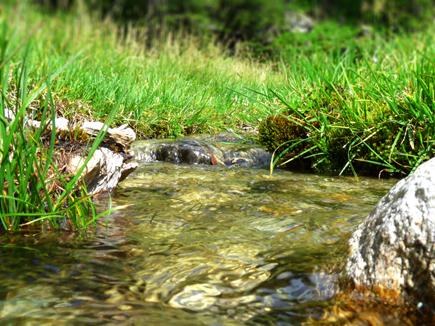 Sustenwasser
